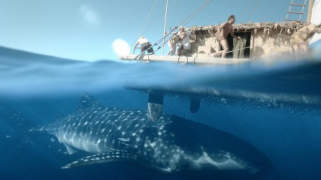 Shark v.s. man in Kon Tiki (2013)